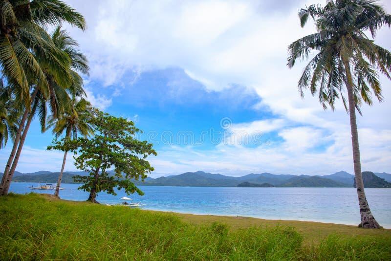 与蓝色海水和绿草的热带海边 空的棕榈滩视图在好日子 青绿的自然风景 库存照片