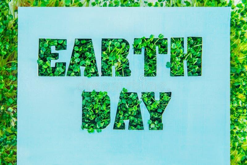 与蓝色绿松石纸空白的创造性的概念与概述字法在绿色新鲜的草的地球日发芽与绿色框架 H 库存照片