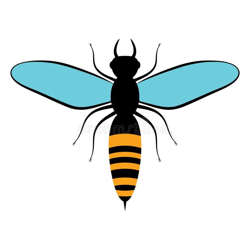 与蓝色翼的飞行的黑色蜜蜂 蜂象,在白色背景 昆虫 平的样式 库存例证