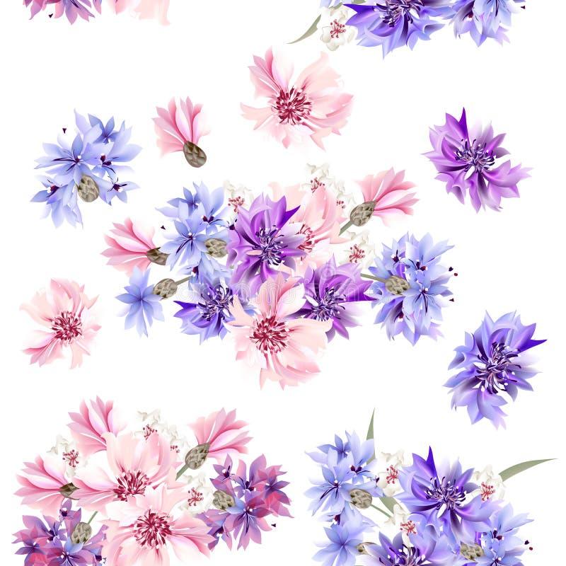 与蓝色,桃红色和紫色矢车菊的无缝的墙纸样式 向量例证