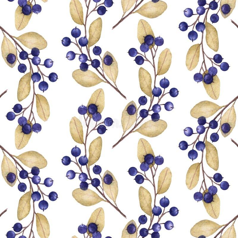 与蓝莓的水彩例证的无缝的样式分支 向量例证