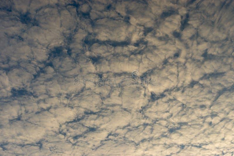 与蓬松白色云彩的蓝天秋季晚上 图库摄影