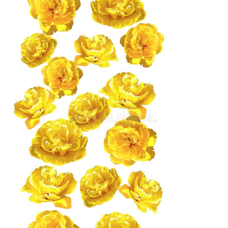 与蓬松黄色郁金香的无缝的样式 美丽的现实花和芽 库存例证