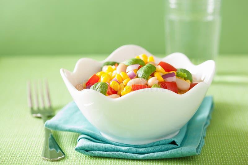 与蕃茄葱白豆蓬蒿的健康菜用结页草 库存图片