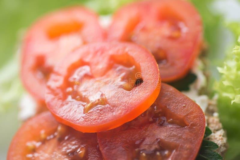 与蕃茄选择聚焦宏指令的健康单片三明治 图库摄影