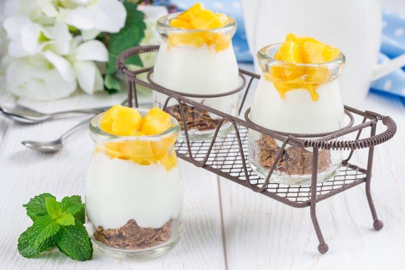与薄糠片、简单的酸奶和芒果的点心 图库摄影