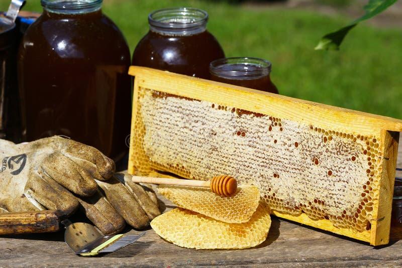 与蜂的框架 蜂蜜梳子用由蜂做的蜂蜜在木灰色土气背景 地道生活方式图象 顶视图 自由 免版税库存图片