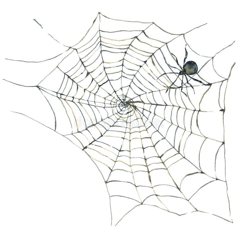 与蜘蛛和网的水彩卡片 库存例证