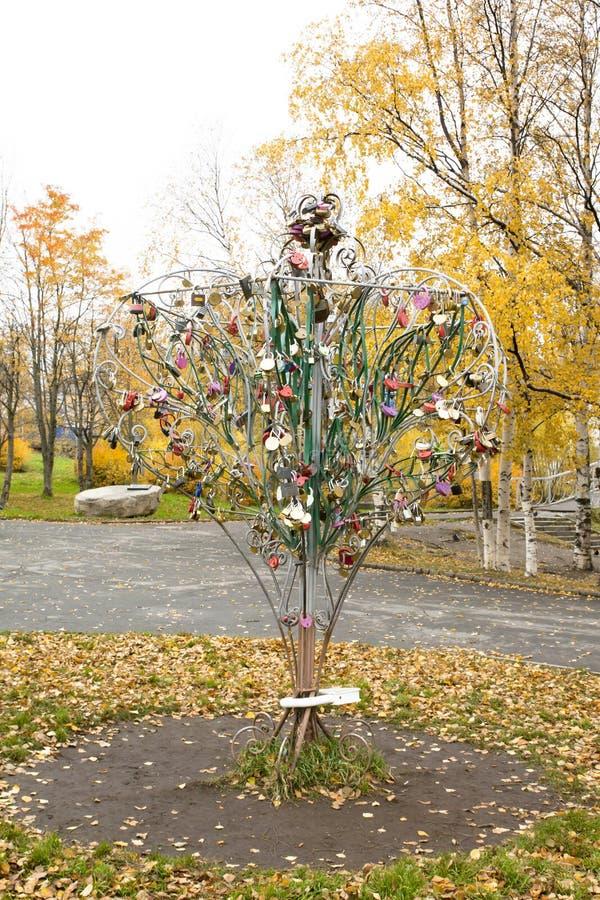 与蜜月旅行者锁的树在公园 免版税库存照片