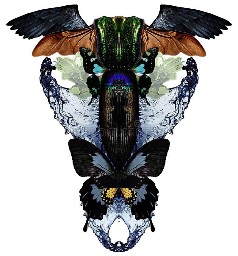 与蝴蝶、水、水晶、臭虫和鸟的现代印刷品飞过 向量例证