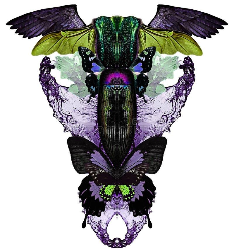 与蝴蝶、水、水晶、臭虫和鸟的现代印刷品飞过 皇族释放例证
