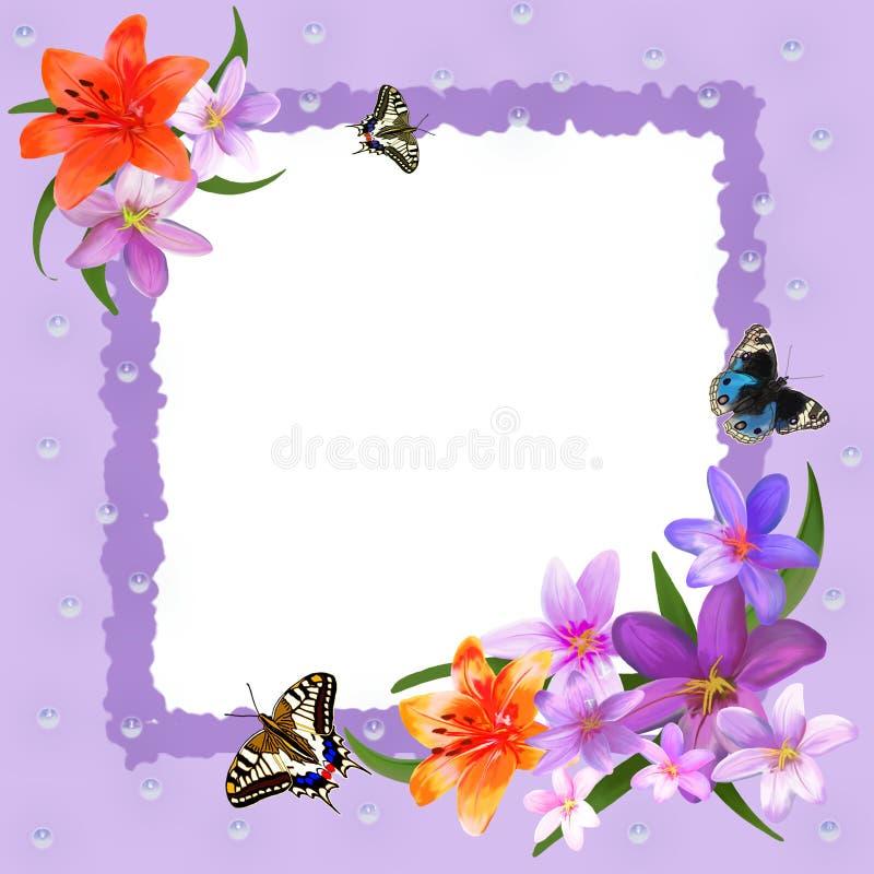 与蝴蝶和花的彩色照片框架 库存例证