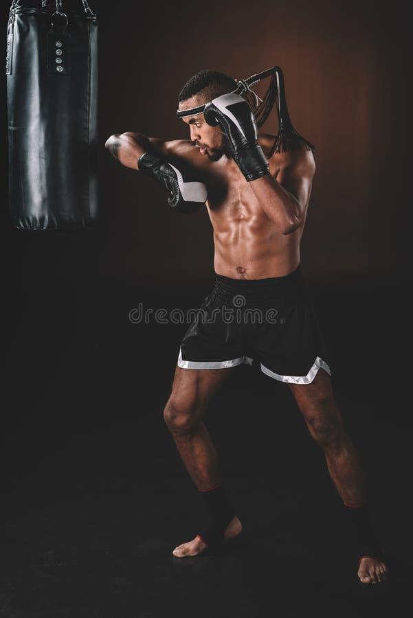 与行使与沙袋的拳击手套的年轻赤裸上身的泰拳战斗机 图库摄影