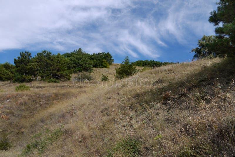 与被弄脏的云彩的蓝天在小山的干草 免版税库存照片