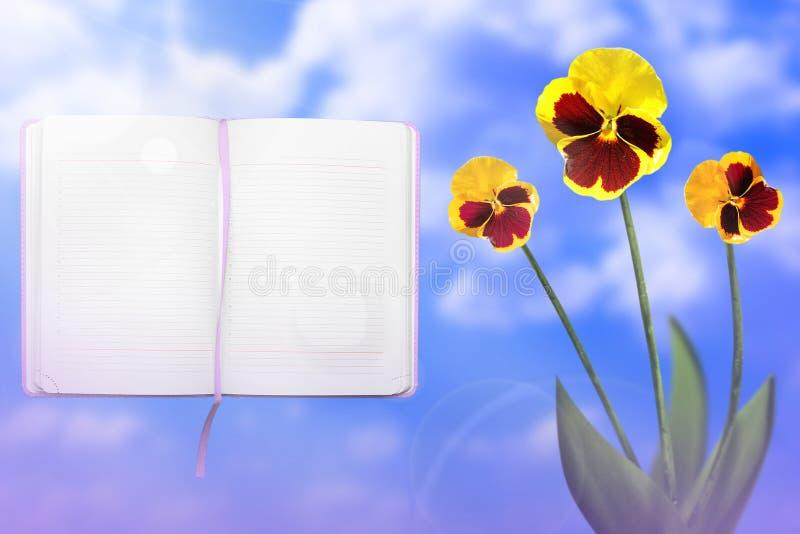 与被打开的笔记本的美好的活vittrock紫罗兰与在左边的空白的地方供参考在多云天空背景 flor 免版税图库摄影
