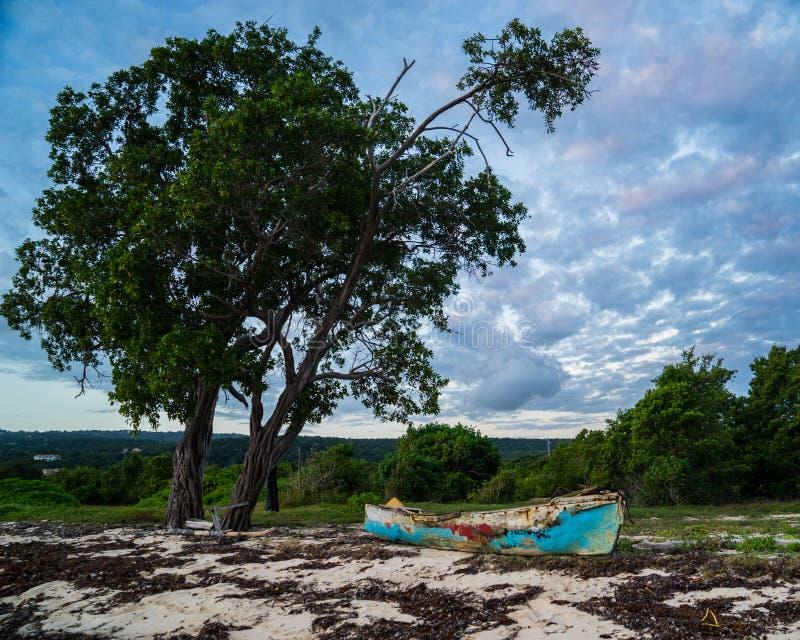 与被放弃的渔船和树的遥远的牙买加海滩 免版税库存图片