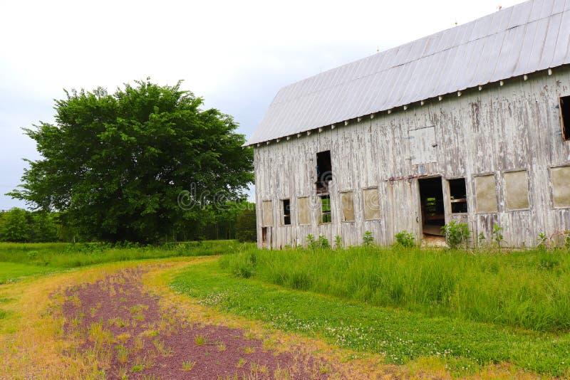 与被放弃的谷仓和弯曲的路径的俏丽的小的农田场面,加上充分的绿色树 免版税库存照片