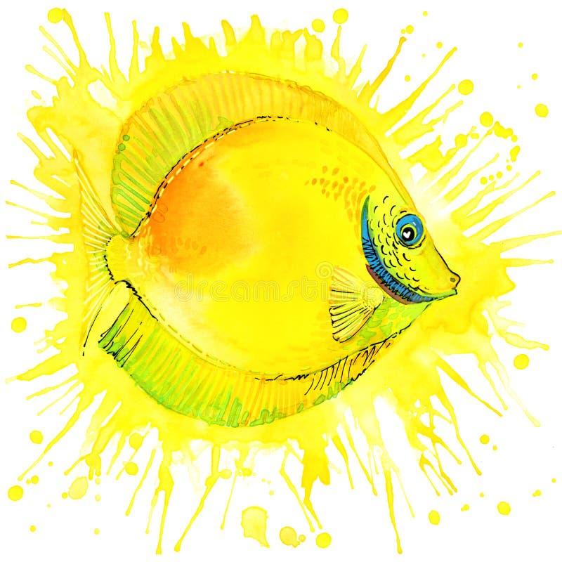 与被构造的水彩飞溅的滑稽的金鱼 向量例证