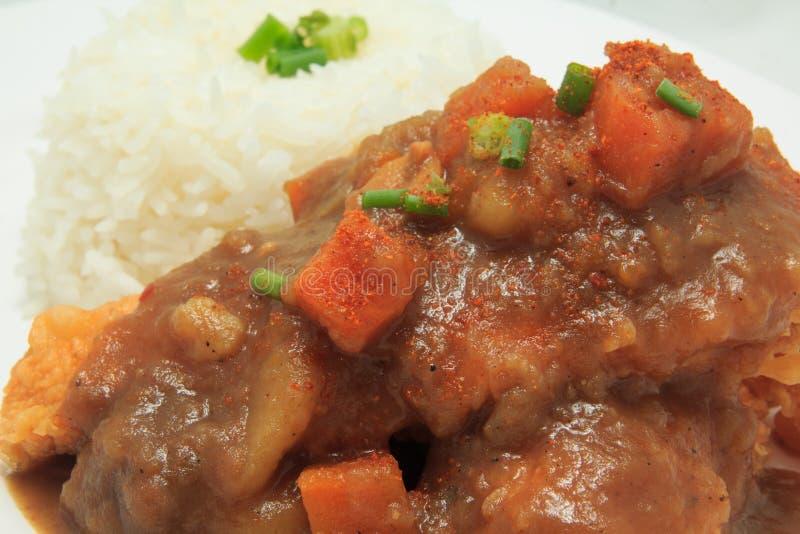 与被油炸的鸡的日本烹调米和咖喱汁用土豆和红萝卜 免版税库存图片