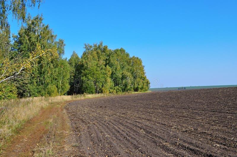 与被犁的领域的秋天风景 免版税库存照片