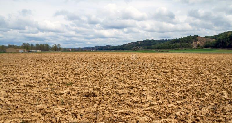 与被种植的土地的风景 库存图片