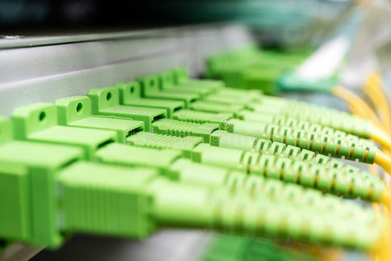 与被连接的插接线缆绳的光学配线板 免版税库存照片