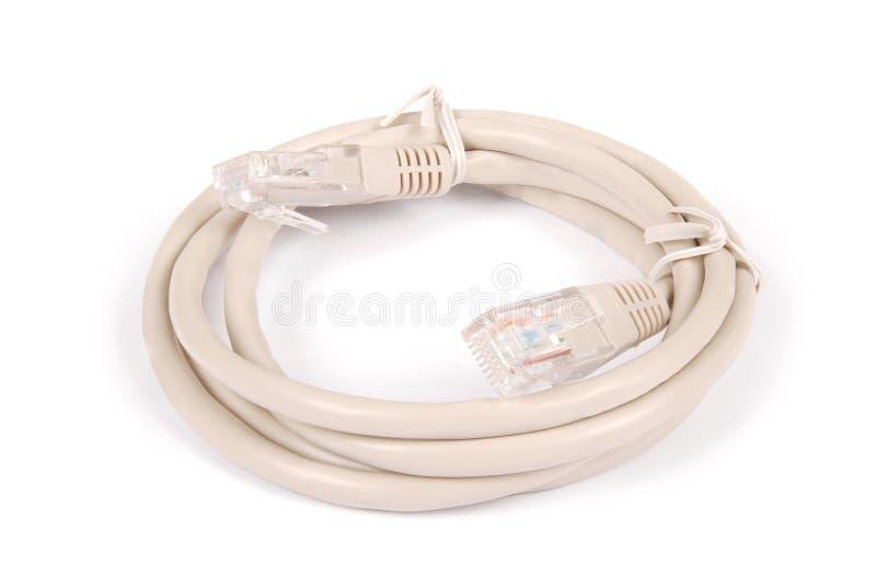 与被铸造的RJ45插座的插接线灰色网络缆绳 库存图片