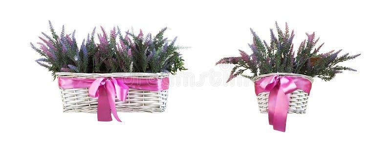 与被隔绝的淡紫色花的篮子 图库摄影