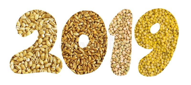 与被隔绝的谷物和种子收藏的2019个数字 库存照片