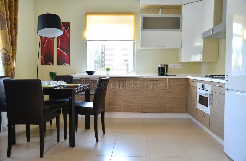 与装置的雄伟房子厨房内部 免版税库存图片
