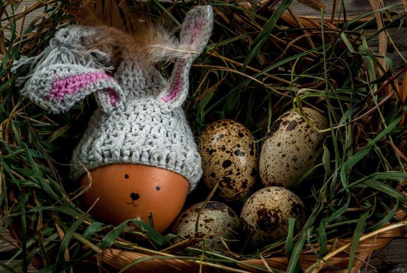 与装饰的土气静物画象兔宝宝鸡怂恿 库存图片