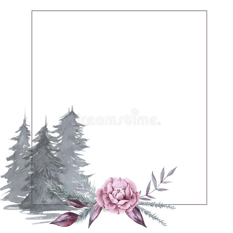 与西伯利亚植物和花的框架 背景查出的白色 皇族释放例证