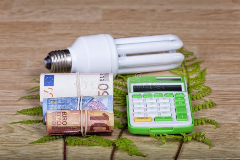 与计算器和金钱的节能电灯泡 库存图片