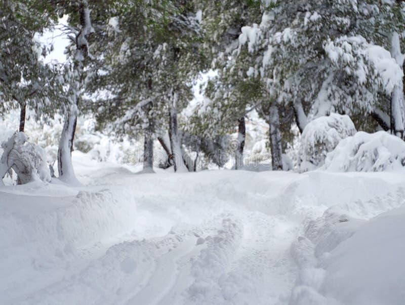 与许多的全景美妙的冬天雪和雪漂泊在Evia,希腊海岛上的希腊村庄  免版税库存照片