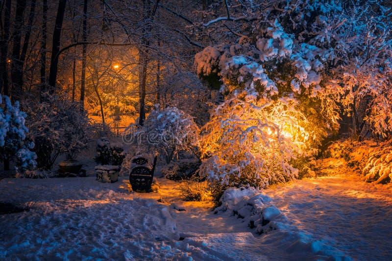 与许多的美好的冬天场面雪和一条长凳在沈默 免版税库存图片