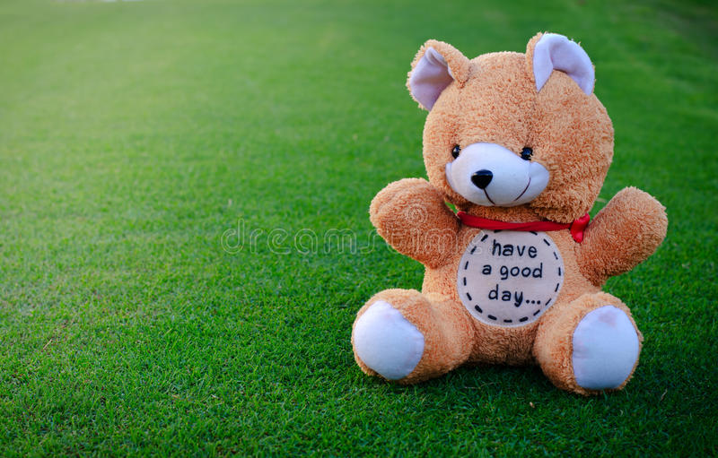 与词`的熊草绿色有一早晨好` 免版税库存图片