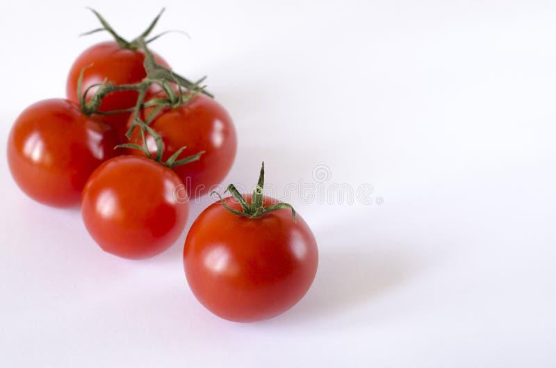 与说谎在白色背景的绿色尾巴的红色水多的西红柿 库存照片