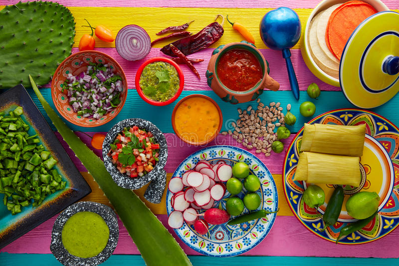 与调味汁胭脂仙人掌和玉米粽子的墨西哥食物混合 图库摄影
