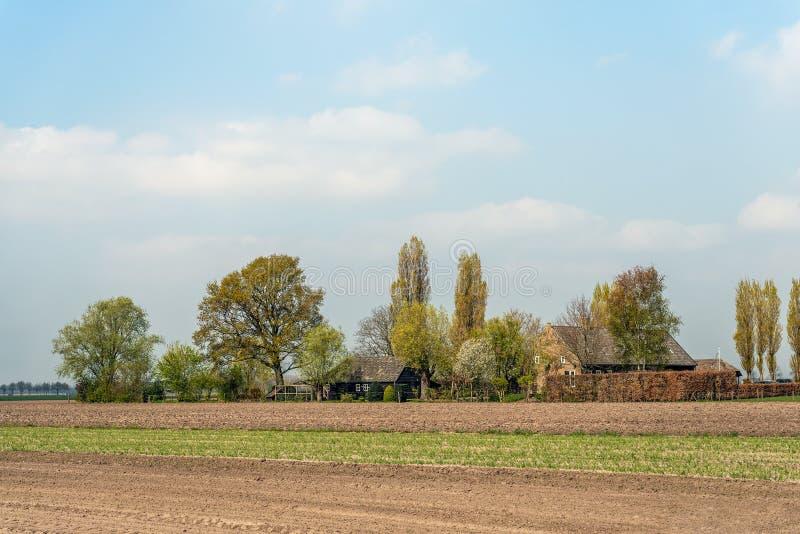 与谷仓的老荷兰农舍 免版税库存照片