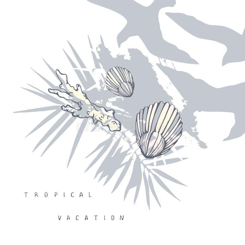 与贝壳和棕榈叶的海构成在淡色 皇族释放例证