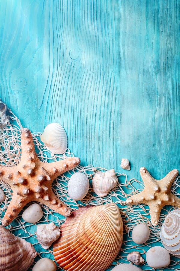 与贝壳和海星的夏时概念在蓝色木板 海滩的基于 与拷贝空间的背景 免版税图库摄影