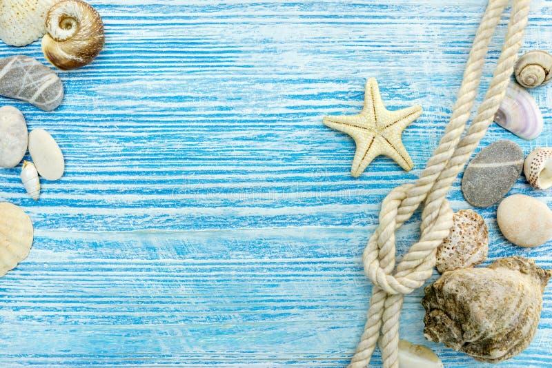 与贝壳的暑假在木backgr的概念和绳索 图库摄影