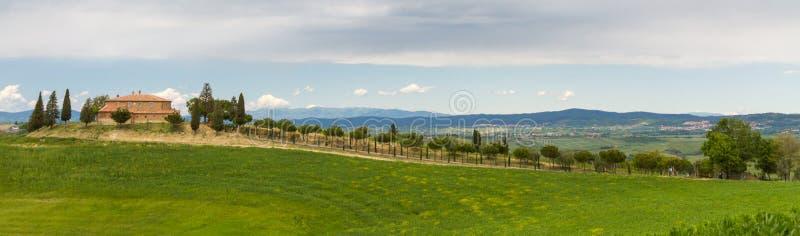 与赛普里斯胡同的托斯卡纳农舍在锡耶纳,意大利附近 免版税库存图片