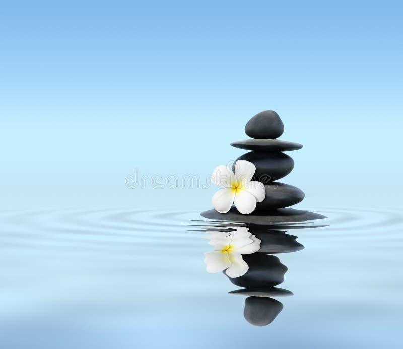 与赤素馨花的禅宗石头 免版税库存照片