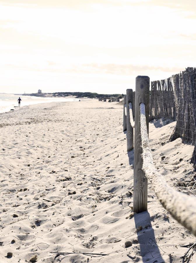 与走或跑步沿水的一个单身的空的海滩 图库摄影