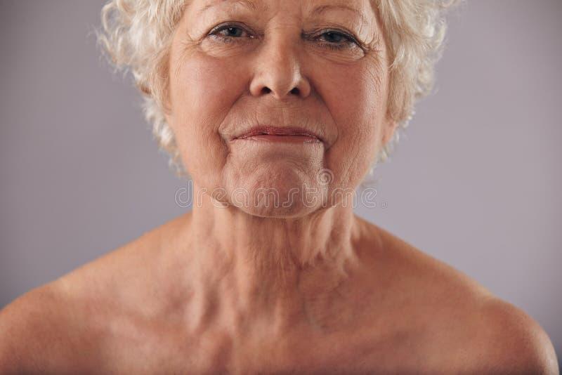 与起皱纹的皮肤的成熟妇女面孔 免版税库存照片