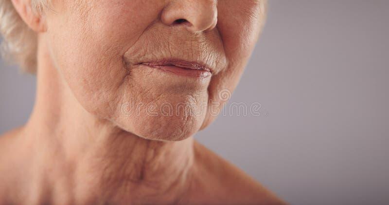 与起皱纹的皮肤的资深女性面孔 库存图片