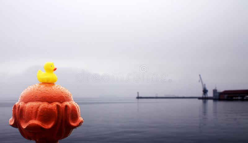 与起重机的黄色橡胶鸭子在背景 库存照片
