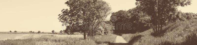 与足迹的古板的全景风景 库存照片