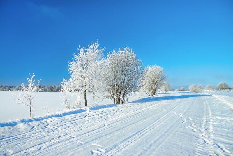 与路、森林和蓝天的冬天农村风景 图库摄影